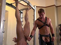 These two muscle hunks are such bad boys. One is hanged upside down my weightlifting machine, and the master is going to have his way with him. He sucks cock, while he is hanging upside down. How much whipping can he endure?
