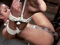 She knew it was going to be hard, when he tied her and shoved a vibrator in her black pussy. Yes, she likes it rough and hard. That's why the man is handling her so bad. These sluts need to be tamed and there is no way of doing it, than suspending them with ropes. She screams for more!