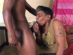 There is moaning after cock is inserted, and pleading as it is taken into the mouth of an Ebony granny.