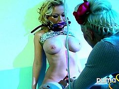 Puma Swede likes to play with her toys in masturbation for Madison Scott and gets a little nasty and wild in BDSM femdom bondage.