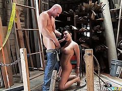 Johnny Sins makes his erect meat stick disappear in adorable Eva Angelinas back swing