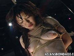 Asian lass tied up and hung from the ceiling is twisted and turned by her master and she gets some sexual treatment that makes her ultra aroused and horny.