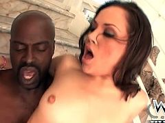 Kristina Rose anally destroyed by BBC