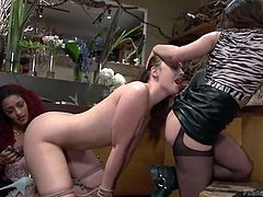 Daisy and Juliette help an angry guy disgrace a slutty bitch. The helpless babe is completely naked and rope bonded. They make her eat pussy and play dirty with a dildo. Click to see Jodi, fingered or banged hard by the man, while she keeps licking cunts or tits. Enjoy the scenes.