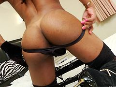 Playing dirty with herself is a part of the game. Watch a slutty ebony shemale with black shiney hair, exposing her fascinating big tits and horny dick in front of the camera. Naughty Cintia shares with generosity the most intimate moments. Watch the kinky masturbation scene and enjoy the sensual details!