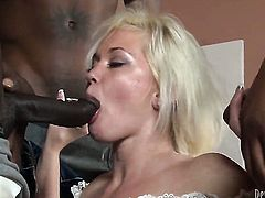 Wesley Pipes has unthinkable anal sex with Breathtakingly beautiful sweetie Jon Jon before headjob