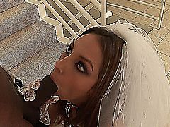 Jenna Haze Bride Interracial
