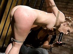 Blonde Mandy Bright has a good time licking Nestys cunt