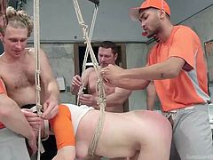 Siouxsie Q does not know any limits when it comes to experiencing high thrills in the company of a gang of horny guys. Click to watch the slutty brunette strongly bonded with ropes and screwed awfully from behind, or with legs spread, while the other men take turns to mouth fuck her...