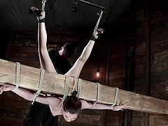 The fierce executor thought it wasn't enough to bond with strong ropes & upside down, the naughty teen he showed his basement to. So Kasey's punishment also includes whipping her lusty pussy with no mercy. Next, the naked slut is tied up to the wall, while wearing a ball gag, so no one could hear her moaning.