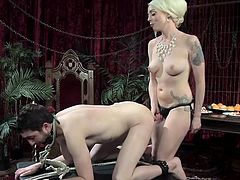 If dominant bitches number among your favorite type of women, click to watch a horny mistress, playing dirty with her partner. For tonight, the tattooed slut decided to punish him in a rough way, using a kinky strap on and making him wear a ball gag. See this hot blonde in complete control of the situation!