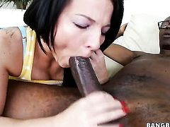 Tiny girl mounts a big dick
