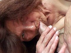 Lewd grandmother bonking her son in law