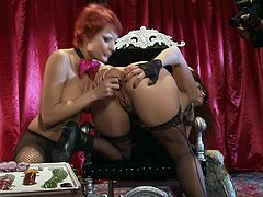 Well stacked women Alektra Blue and Nikki Hunter both with shaved pussy and tight ass hole bare their assets and then have crazy lesbian fun for everyone to watch in this lovely porn parody!