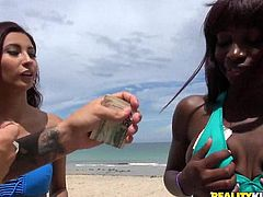 Would you fuck some random guy on the beach on camera for cash? How about doing a lesbian kiss on camera with a friend or even a stranger? On Money Talks, the hosts find out how much green it takes, to get real people to do sexual things on camera. Subscribe, to see how far they go and what it took.
