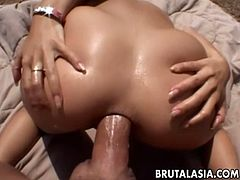Anal sex lover Roxy Jezel enjoys hardcore fuck outdoor
