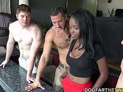 Danny, Jake and Ryan know how to party and how to fuck things up. Danny has to realize that one of Ryan's buddies did something to his dad's fish, so they call for a fish doctor. The doc happens to be Jezabel Vessir, a smokin' hot black girl who hasn't had sex for three months.
