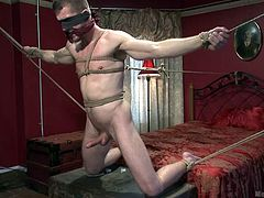 A dominant bald guy enjoys the sight of slutty Tryp's appetizing cock. The naked stud has been tied up in a strong rope bondage. Click to watch the gay master sucking the helpless man's cock, while he is gagged and blindfolded...