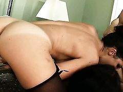 Dillion Harper gets her hole destroyed by stiff meat pole of horny man