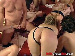 best extreme wild german swinger party fuck orgy this weekend