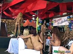 one man for a extreme wild brazilian girlsparty fuck orgy