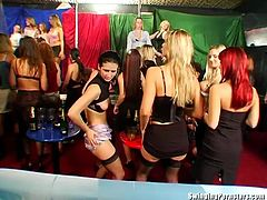 European party turns into the best hardcore sex even