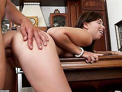 Brunette asian Iva Zan gets her ass way poked doggystyled