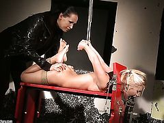 Blonde Nikky Thorne with juicy knockers and Mandy Bright strips down to her birthday suit and then fondle each other