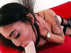 Penelope Stone is ready to toy fuck her muff on cam 24/7