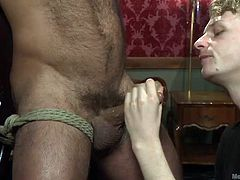 Vinnie is great at his job of dominating other gay men. He has this bear tied up to an x-frame and blindfolded. He brings this pretty blonde twink over and puts him on his knees. The young hairless one gets to work with his mouth and hand.