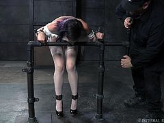 Things are not looking good for this purple haired slut. She is locked and chained up in a grimy dungeon with no hopes of escape. Her master has her in bondage and that's where this naughty slut will stay. Her clothes are torn off, to reveal her soft breasts and cute panties.