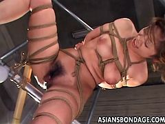 The way the ropes got her sure makes her boobs perk up, as well as her nipples. She really loves to be treated this way and she gets to be teased with a sex-toy.