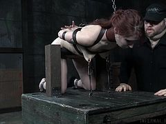 If you got a sexy ginger in a dungeon, manacled to a device with her pussy in the air, what would you do? Her executor is the one who really has some discipline to keep from ravaging her right there. It is certainly tempting.
