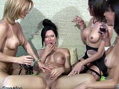 One blonde and three raven haired shemales come together and share a bottle of wine. Crazy party that ends with lot of shecock sucking and banging until all four dolls with balls are jizzing their...