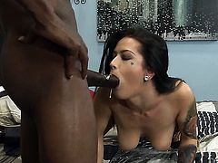 Wesley Pipes touches the hottest parts of sexy Katrina Jades body before he bangs her mouth