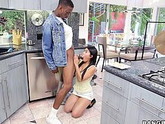 Cute Cindy is showing her black boyfriend, how to use chopsticks and soon things turn sexual. The erotic slut even uses her chopsticks to jerk him off, as she sucks that massive black cock. Will she be able to handle such a big black penis?