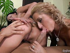 Satin Bloom is good on her way to make hard cocked dude explode on oral action