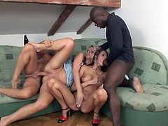 Babes bouncing on dicks and blowing guys in a foursome