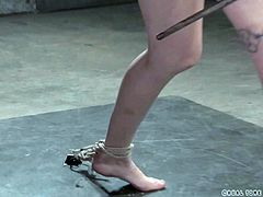 Even if mercy could beg right now, no one would hear her with her mouth tightly wrapped shut. She has weights on the nipple clamps attached to her, and a rope going right in the crack of her ass. Better hope she doesn't get rope burn there.