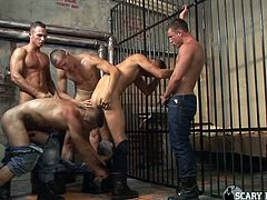 Prison is not a good place, but if you're gay and have all of these hot guys around you, then maybe it's not so bad after all. The new guy gets initiated and he must suck off, and give up that ass to the veterans in the cellblock.