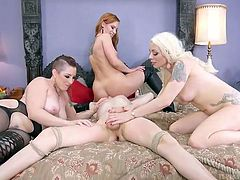 hot orgy with pornstars and a stunning shemale