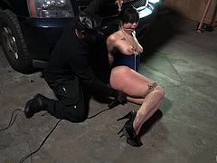 Rich babe Siouxsie, never thought, that she will be humiliated and dominated. Jack Hammerx abducted her and tied to car hood in his garage. He exposed her big boobs and placed a vibrator on her clit. She screamed loudly, but her painful screams tuned into pleasurable moans eventually.