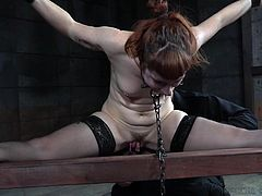 Barbary Rose loves to be dominated, but this session was a nightmare. She was tied up to a wooden rack and her mouth was gagged. She can neither scream, nor moan, while her master was exploiting her body. In this session, this horny milf experienced several orgasms and she was really...