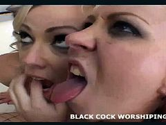 Sit and watch me worship his huge ebony cock