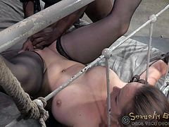With legs strongly tied with inescapable ropes and hands in shackles, Bella Rossi is kept under control by two horny guys, that use her in the most dirtiest ways, dominating her with their cocks. Click to watch the hardcore scenes!