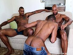 This hung black stud loves cock and his two friends relax on the couch, as he sucks both of them off. Is their anything hotter, than watching an ebony hunk suck on multiple big black cocks? He gets rimmed, as a thank you for his oral servitude.