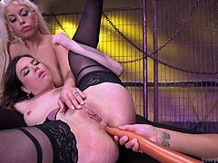 Bridgette and Francesca enjoy getting another girl to have fun with them, but they always want a new one. Juliette plays along with the older women, and she gets her ass fucked by a ridiculously long dildo in the process.