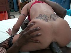 La Cochonne - Hot hard pussy and ass fuck with amateur French mature slut