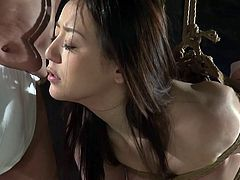 Kaho is like most Japanese women. They are eager to please their men, however they have to go about it. For her, it is suspended and tied with ropes, sucking her lover's cock. He toys with her, finally rubbing her pussy, making the floor underneath very wet indeed.