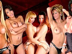 t-girl babes get their massive asses penetrated in foursome
